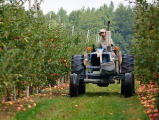 Axudas a empendedores do agro